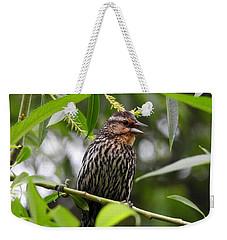 Female Redwinged Blackbird Weekender Tote Bag