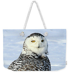 Female Snowy Owl Weekender Tote Bag