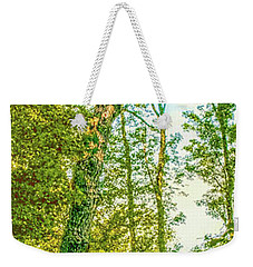 Weekender Tote Bag featuring the photograph Female Tree.  by Leif Sohlman