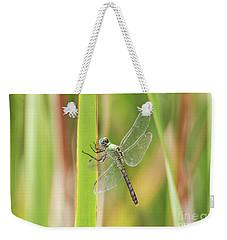 Female Western Pondhawk Weekender Tote Bag