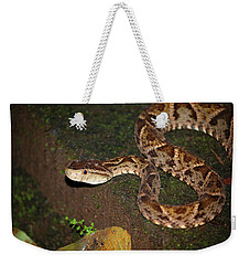 Weekender Tote Bag featuring the photograph Fer-de-lance, Botherops Asper by Breck Bartholomew