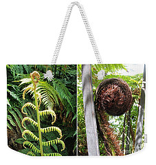 Weekender Tote Bag featuring the photograph Fern And Koru by Dianne  Connolly