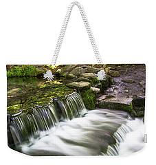 Fern Spring 4 Weekender Tote Bag