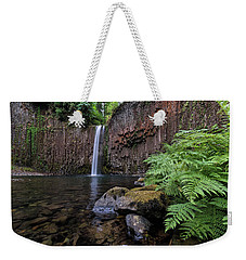 Ferns And Rocks By Abiqua Falls Weekender Tote Bag