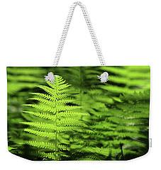 Ferns Stony Brook New York Weekender Tote Bag by Bob Savage