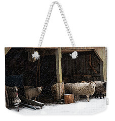 Weekender Tote Bag featuring the photograph Fiber And Feather by Robin-Lee Vieira