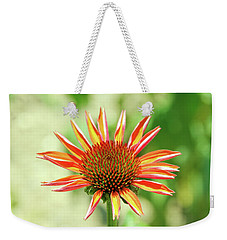 Weekender Tote Bag featuring the photograph Fibonacci by David Chandler