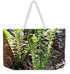 Fiddlehead Ferns Weekender Tote Bag