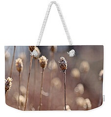 Field Of Dried Flowers In Earth Tones Weekender Tote Bag