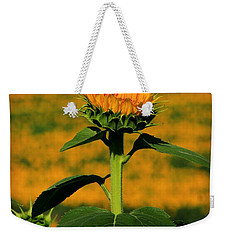 Weekender Tote Bag featuring the photograph Field Of Gold by Chris Berry