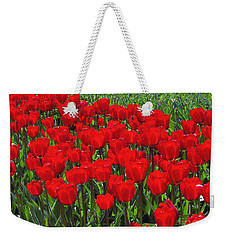 Field Of Red Tulips Weekender Tote Bag