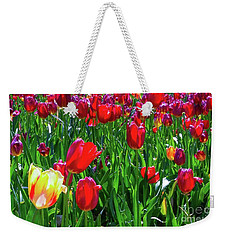 Weekender Tote Bag featuring the photograph Tulip Garden by D Davila
