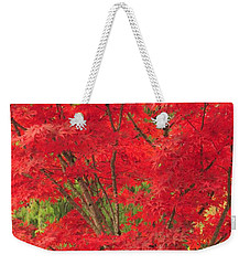 Fiery Japanese Maple Weekender Tote Bag