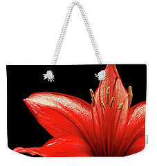 Weekender Tote Bag featuring the photograph Fiery Red by Judy Vincent