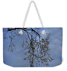 Weekender Tote Bag featuring the photograph Filigree From On High by Skip Willits