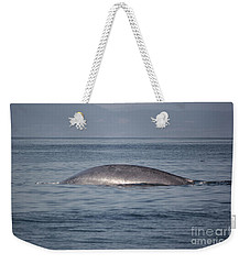 Weekender Tote Bag featuring the photograph Blue Whale by Suzanne Luft