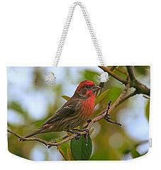 Finch Portraiture Weekender Tote Bag