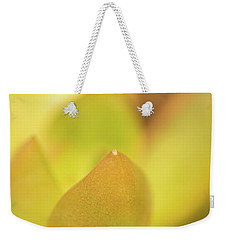 Find Focus In Nature Weekender Tote Bag by Ana V Ramirez