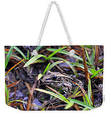 Weekender Tote Bag featuring the photograph Fine Frog by Al Powell Photography USA