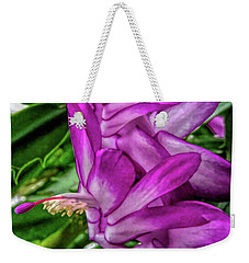 Weekender Tote Bag featuring the photograph Fine Wine Cafe Christmas Cactus Flower by Aimee L Maher Photography and Art Visit ALMGallerydotcom