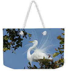 Weekender Tote Bag featuring the photograph Finery by Fraida Gutovich