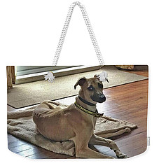 Finly - Ava The Saluki's New Companion Weekender Tote Bag