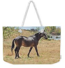 Finnon Lake Horse Weekender Tote Bag