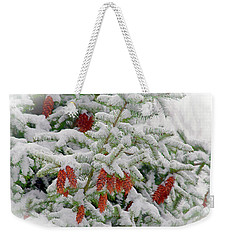 Weekender Tote Bag featuring the photograph Fir Cones On White Photo Art by Sharon Talson