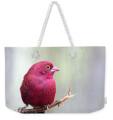Fire Finch Weekender Tote Bag by Marion Cullen