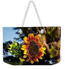Weekender Tote Bag featuring the photograph Fire In The Garden by Angela J Wright