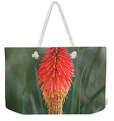 Weekender Tote Bag featuring the photograph Firecracker by David Chandler