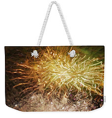 Weekender Tote Bag featuring the photograph Fireworks 10 by Joan Reese