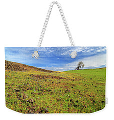 Weekender Tote Bag featuring the photograph First Flowers On North Table Mountain by James Eddy