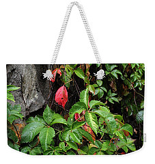 First Signs Of Fall Approaching Weekender Tote Bag by Natalie Ortiz