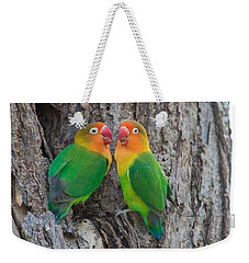 Fischers Lovebird Agapornis Fischeri Weekender Tote Bag by Panoramic Images