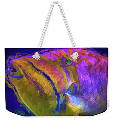 Fish Paint Dory Nemo Weekender Tote Bag by David Haskett