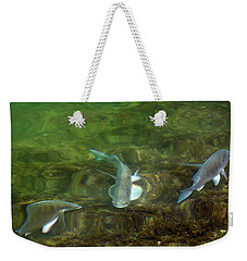 Fish Refractions Weekender Tote Bag