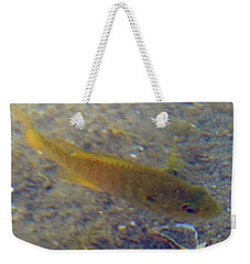 Fish Sandy Bottom Weekender Tote Bag