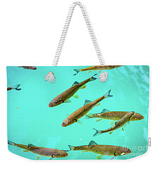 Fish School In Turquoise Lake - Plitvice Lakes National Park, Croatia Weekender Tote Bag