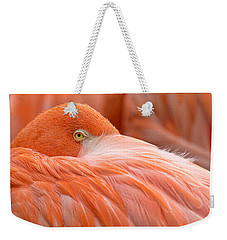 Flamboyant Flamingo Weekender Tote Bag