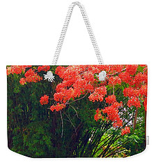 Flamboyant With Bamboo Weekender Tote Bag