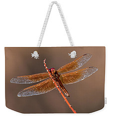 Weekender Tote Bag featuring the photograph Flame Skimmer Close Up by Dan McManus
