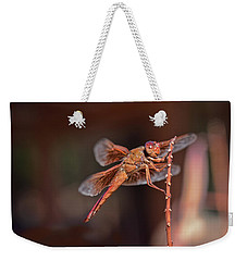 Weekender Tote Bag featuring the photograph Flame Skimmer by Dan McManus