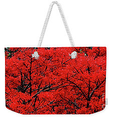 Weekender Tote Bag featuring the photograph Flaming Red Panorama II By Kaye Menner by Kaye Menner
