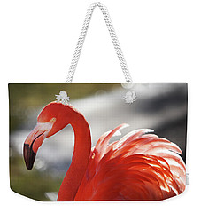 Weekender Tote Bag featuring the photograph Flamingo 2 by Marie Leslie