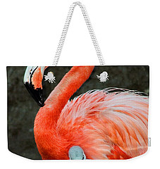 Flamingo And Baby Weekender Tote Bag