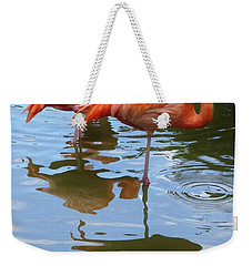 Weekender Tote Bag featuring the photograph Flamingo Reflections by Margaret Bobb