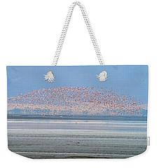 Flamingos And Golden Jackal In Tanzania Weekender Tote Bag