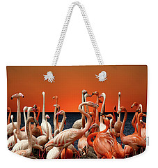Weekender Tote Bag featuring the photograph Flamingos At The Cape by Ericamaxine Price
