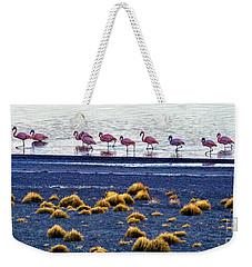 Weekender Tote Bag featuring the photograph Flamingos At Torres Del Paine by Bernardo Galmarini